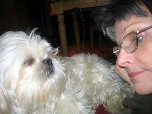 Howard — the ten thousand dollar dog